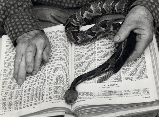 Serpent-&-Bible_87_